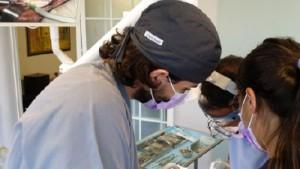Formacion Continuada Odontologia